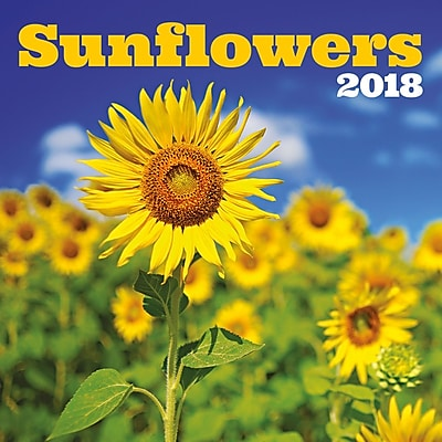 """""2018 Turner Photographic 12""""""""x12"""""""" Sunflowers Wall Calendar (18998940054)"""""" 24233829"