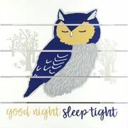 "Linden Avenue Wall Art GOOD NIGHT SLEEP TIGHT 12"" x 12"" (AVE10024)"