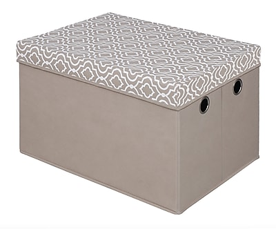 Bintopia Storage Trunk With Removable Lid, Taupe (22047)
