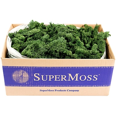 Supermoss Forest Preserved Reindeer Moss, 3 lb (RM3LB-21710) 24239541