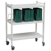 "Omnimed 35"" Standard 10 Cap Vertical Chart File Cart Steel In Light Grey (260001)"