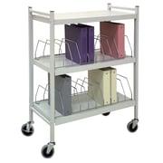"Omnimed 35"" Standard 20 Cap Vertical Chart File Cart Steel In Light Grey (260002)"