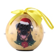 Gold Twinkling Lights Christmas Tree  Ball Ornament home decor Dog Puppy, Rottweiler (ONRDOG416)