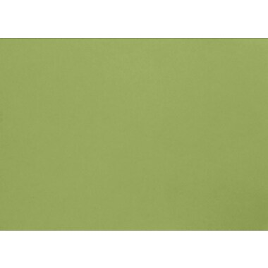 LUX A1 Flat Card (3 1/2 x 4 7/8) 50/Pack, Avocado (EX4010-27-50)