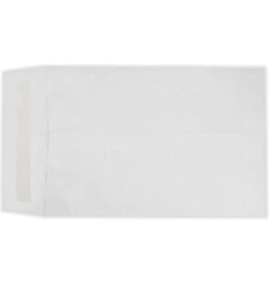LUX 6 1/2 x 9 1/2 Open End Envelopes 250/Pack, 14lb. Tyvek (75829-250)