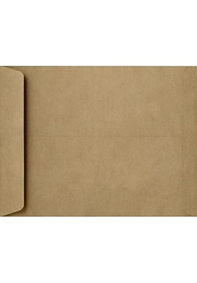 LUX 8 1/2 x 10 1/2 Open End Envelopes 50/Pack, Grocery Bag (4892-GB-50)