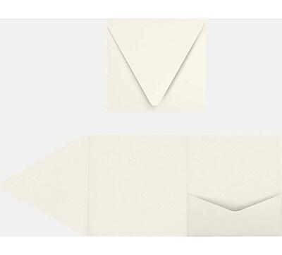 LUX 6 x 6 Pocket Invitations 10/Pack, Quartz Metallic (EX10LEBAQM6SPF1)