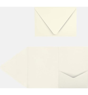 LUX A7 Pocket Invitations (5 x 7) 10/Pack, Quartz Metallic (EX10LEBAQMPF10)