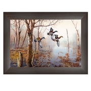 """TrendyDecor4U 15 in. x 21 in. """"Backwater"""" by Jim Hansen, Printed Framed Wall Art (JH119-636MB)"""