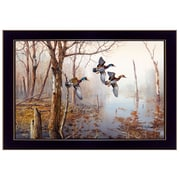 """TrendyDecor4U 14 in. x 20 in. """"Backwater"""" by Jim Hansen, Printed Framed Wall Art (JH119-712)"""
