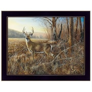 """TrendyDecor4U 18 in. x 14 in. """"Bluff Country Buck"""" by Jim Hansen, Printed Framed Wall Art (JH152A-712)"""