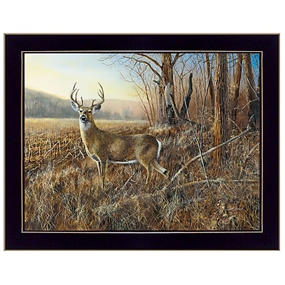TrendyDecor4U 18 in. x 14 in.