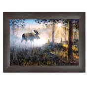 """TrendyDecor4U 15 in. x 21 in. """"Walk in the Mist"""" by Jim Hansen, Printed Framed Wall Art (JH156-636MB)"""