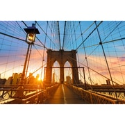 "Paperflow Decorative Picture, Brooklyn Bridge, 25.59""H x 38.58"" (PHT08C)"