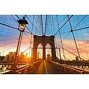 "Paperflow Decorative Picture, Brooklyn Bridge, 25.59""H x 38.58"" (PHT08C)"