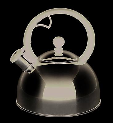 Farberware 2 qt. Sonoma Whistling Teakettle, Stainless Steel (50122)
