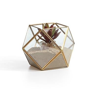 Danya B Polyhedral Brass and Glass Terrarium (EK0019)