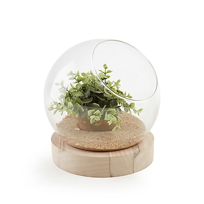 Danya B. Glass Orb Terrarium/Vase on Wooden Stand (EK17192)