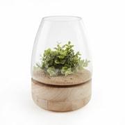 Danya B. Bullet Glass Vase/Candle Holder on Wooden Stand (EK4392)