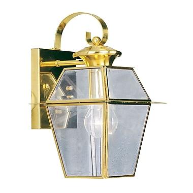 Livex Lighting 1-Light Polished Brass Outdoor Lantern (2181-02)