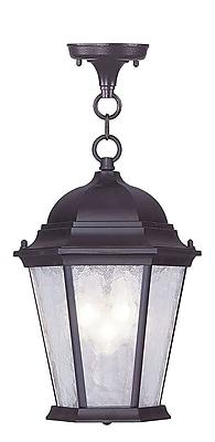 Livex Lighting 3-Light Bronze Outdoor Hanging Pendant (7564-07)