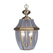 Livex Lighting 2-Light Antique Brass Outdoor Pendant (2255-01)