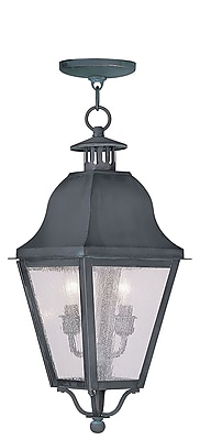 Livex Lighting 2-Light Charcoal Outdoor Pendant with Seeded Glass (2546-61)