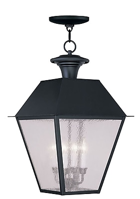 Livex Lighting 4-Light Black Outdoor Pendant with Seeded Glass (2174-04)