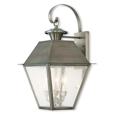 Livex Lighting 2-Light Vintage Pewter Outdoor Wall Mount Lantern (2168-29)