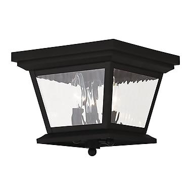 Livex Lighting 3-Light Black Outdoor Flush Mount (20239-04)
