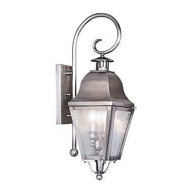 Livex Lighting 2-Light Wall Vintage Pewter Outdoor Wall Lantern (2551-29)