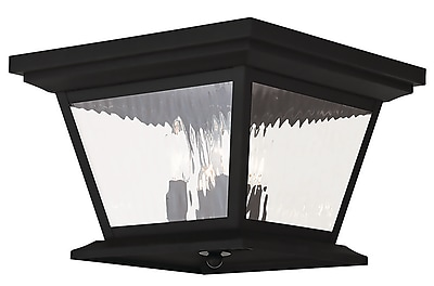 Livex Lighting 4-Light Black Outdoor Flush Mount (20249-04)