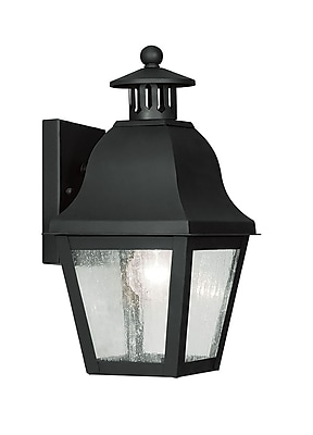 Livex Lighting 1-Light Wall Black Outdoor Wall Lantern (2550-04)