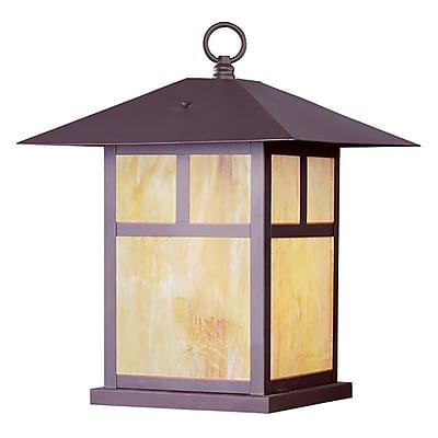 Livex Lighting 1-Light Bronze Outdoor Flush Mount (2144-07)