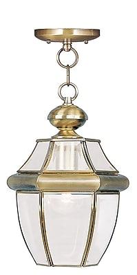 Livex Lighting 1-Light Antique Brass Outdoor Pendant (2152-01)