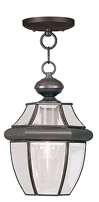 Livex Lighting 1-Light Bronze Outdoor Pendant-Light (2152-07)