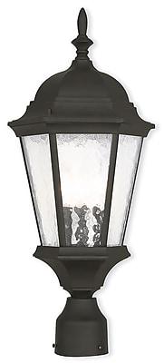 Livex Lighting 3-Light Outdoor Textured Black Post Light (75468-14)