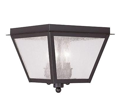 Livex Lighting 3-Light Bronze Outdoor Mount with Seeded Glass (2549-07)