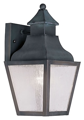 Livex Lighting 1-Light Charcoal Outdoor Wall Lantern with Seeded Glass (2450-61)