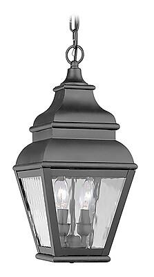 Livex Lighting 2-Light Black Outdoor Pendant-Light (2604-04)