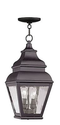 Livex Lighting 2-Light Bronze Outdoor Pendant with Clear Water Glass (2604-07)
