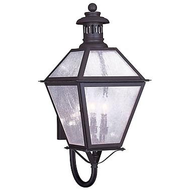 Livex Lighting 3-Light 27 in. Bronze Finish Seeded Glass Outdoor Wall Lantern (2047-07)