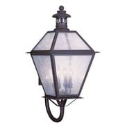 Livex Lighting 4-Light 30 in. Bronze Finish Seeded Glass Outdoor Wall Lantern (2050-07)