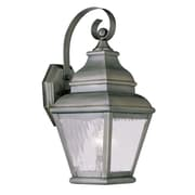 Livex Lighting 1-Light Vintage Pewter Outdoor Wall Lantern with Clear Water Glass (2601-29)