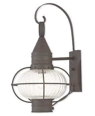 Livex Lighting 1-Light Bronze Outdoor Wall Mount Lantern (27004-07)