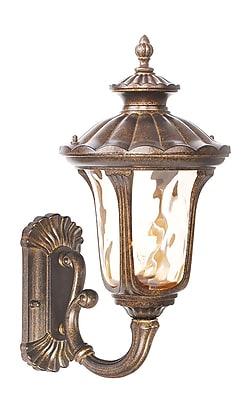 Livex Lighting 1-Light Moroccan Gold Outdoor Lantern (7652-50)