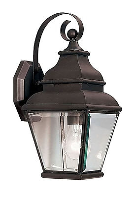 Livex Lighting 1-Light Bronze Outdoor Wall Lantern with Clear Beveled Glass (2590-07)