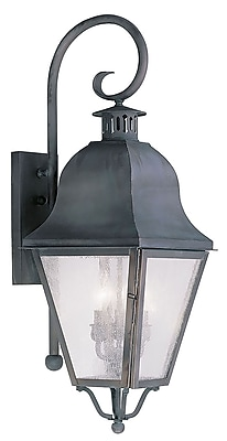 Livex Lighting 3-Light Charcoal Outdoor Wall Lantern with Seeded Glass (2555-61)