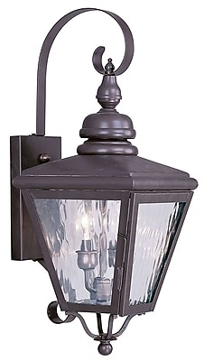 Livex Lighting 2-Light Wall Bronze Outdoor Wall Lantern (2031-07)