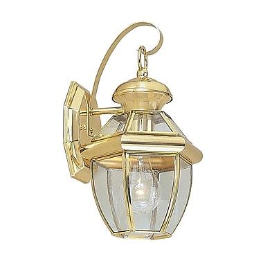 Livex Lighting 1-Light 13 in. Bright Brass Finish Clear Flat Glass Outdoor Wall Lantern (2051-02)